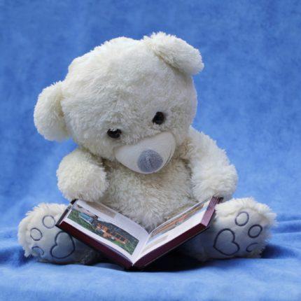 Orsetto che legge